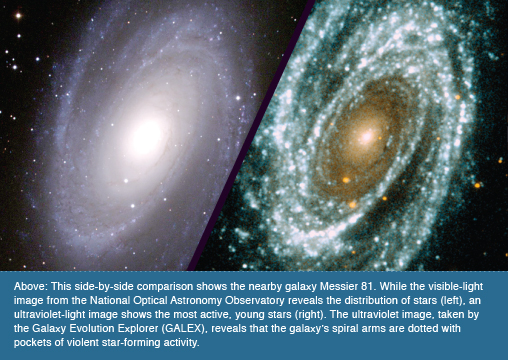 Above: This side-by-side comparison shows the nearby galaxy Messier 81. While the visible-light image from the National Optical Astronomy Observatory reveals the distribution of stars (left), an ultraviolet-light image shows the most active, young stars (right). The ultraviolet image, taken by the Galaxy Evolution Explorer (GALEX), reveals that the galaxy's spiral arms are dotted with pockets of violent star-forming activity.